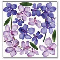 Folie Sospeso Trasparente- Orchid Branch